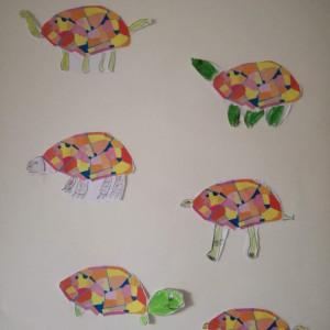 città tartaruga