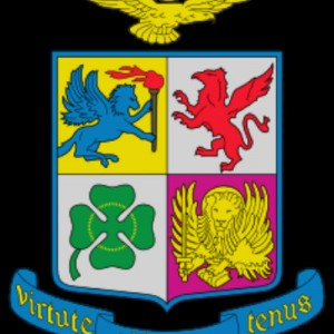 coat arms the italian air force