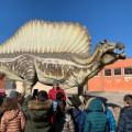 dinosauri calimera