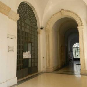 galatina biblioteca