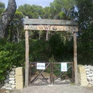 le cesine  riserva naturale dello stato 01